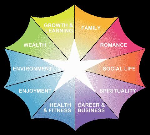 whole person coaching web of life
