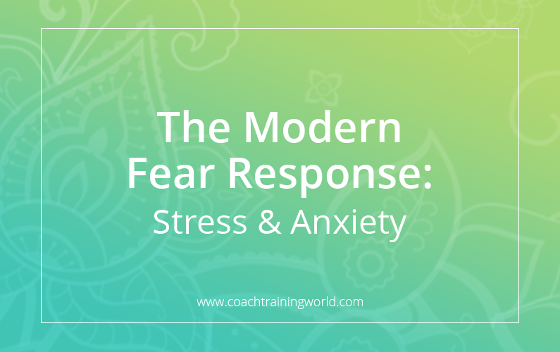 The Modern Fear Response: Stress & Anxiety